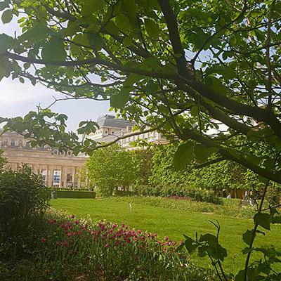 Le jardin du Palais Royal